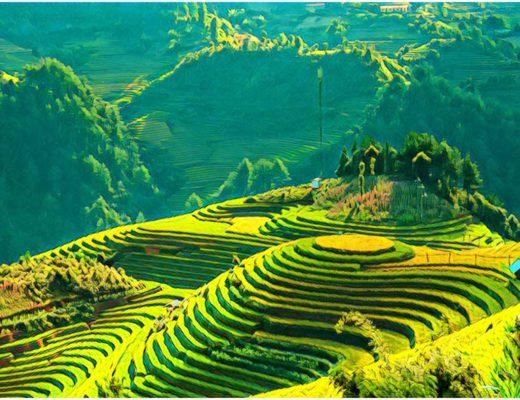 Ryga Hošiminas Vietnamas